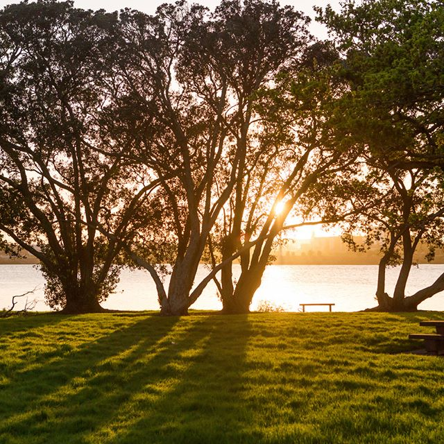 This #stunning spot is only 4km from #RichmondAuckland! Seaside Park includes a loop walk, playground, picnic tables, and fantastic views over the Tamaki Estuary. A great place to take your dog for a walk or enjoy a game of cricket with the #family. What more could you ask for on your back doorstep!? #KiwiSummer #WeLoveSummer #Kids #Fun #Community #Richmond #Auckland #CityFringe #Park #Playground #Fitness #Walk #Run #Dog #Sport #Views #Seaside #Otahuhu