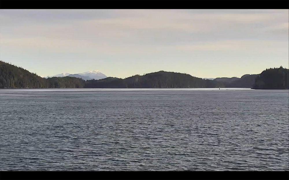 Still of Livestream from British Columbia