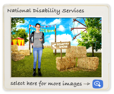 National Dissability Service screen shot