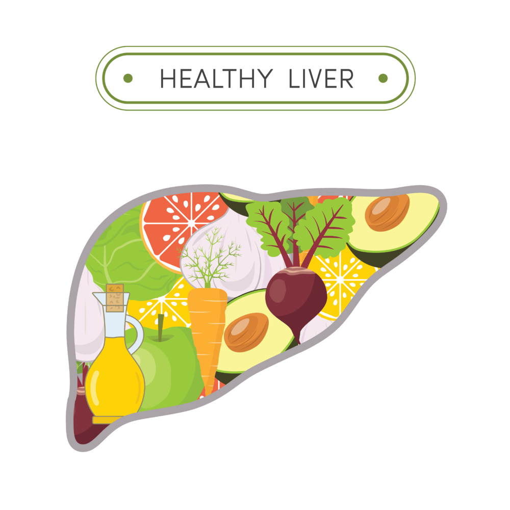 Healthy Liver@3x.png