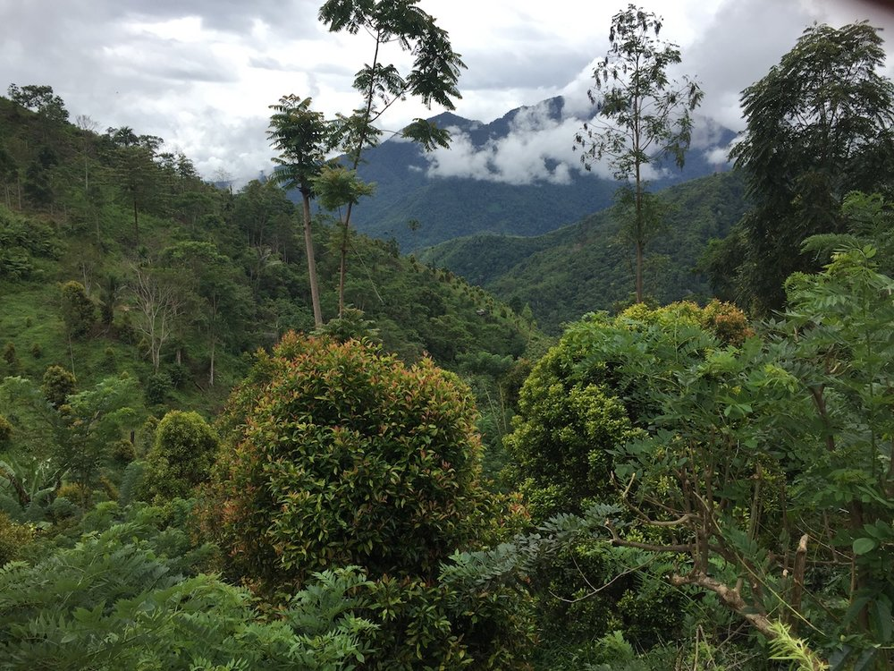 100% ownership of the Awak Mas Gold Project in Sulawesi, Indonesia    Click here for Investor Information
