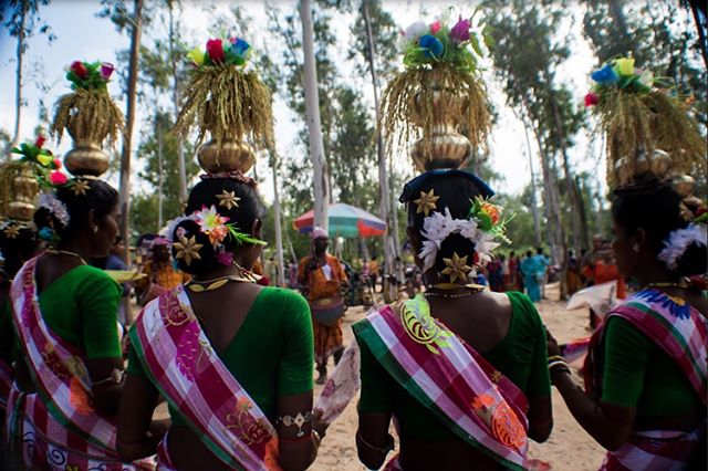The Santal people, an indigenous people of East India are seen performing a dance at the local open-air marketplace in Shantiniketan, a village in West Bengal. (1) Wearing their traditional garments, Santal women balance pots and flowers on their heads, while displaying their impeccable sense of rhythm through dance and song. (2) In accompaniment, Santal men create beats on their drums. (3) The men also wear a string of small, metal bells around their feet, to add a syncopated beat to their rhythmic cacophony, as they step. In recent years, tourism has promulgated rapid urbanization of the village, and has commercialized such cultural practices of the Santal people, who often perform for tourists in the scorching heat for hours at a time. • • • • • #shantiniketan #bolpur #westbengal #india #santal #adivasi #natgeotravel #natgeoyourshot #natgeo #travelphotography #wanderlust