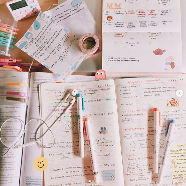 BY INSTAGRAMMER @STUDYNG