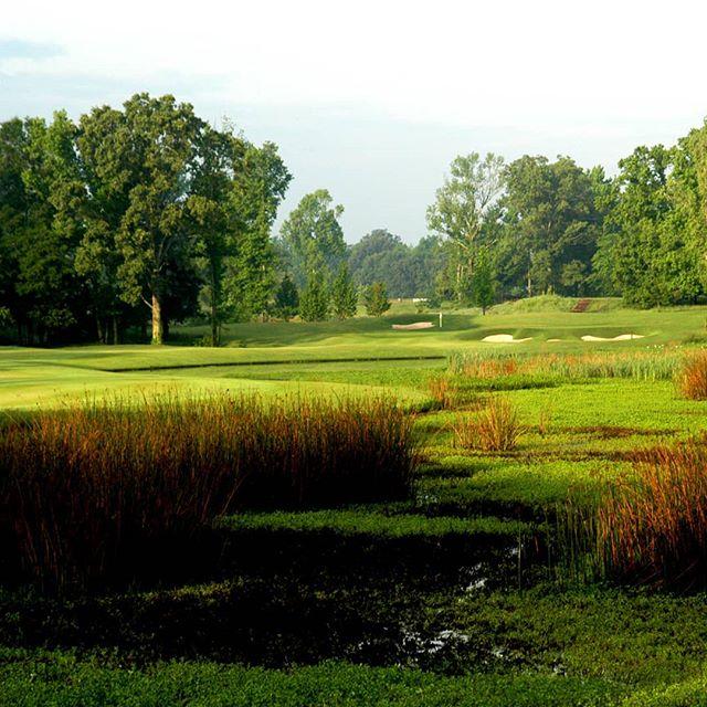 Golf in nature