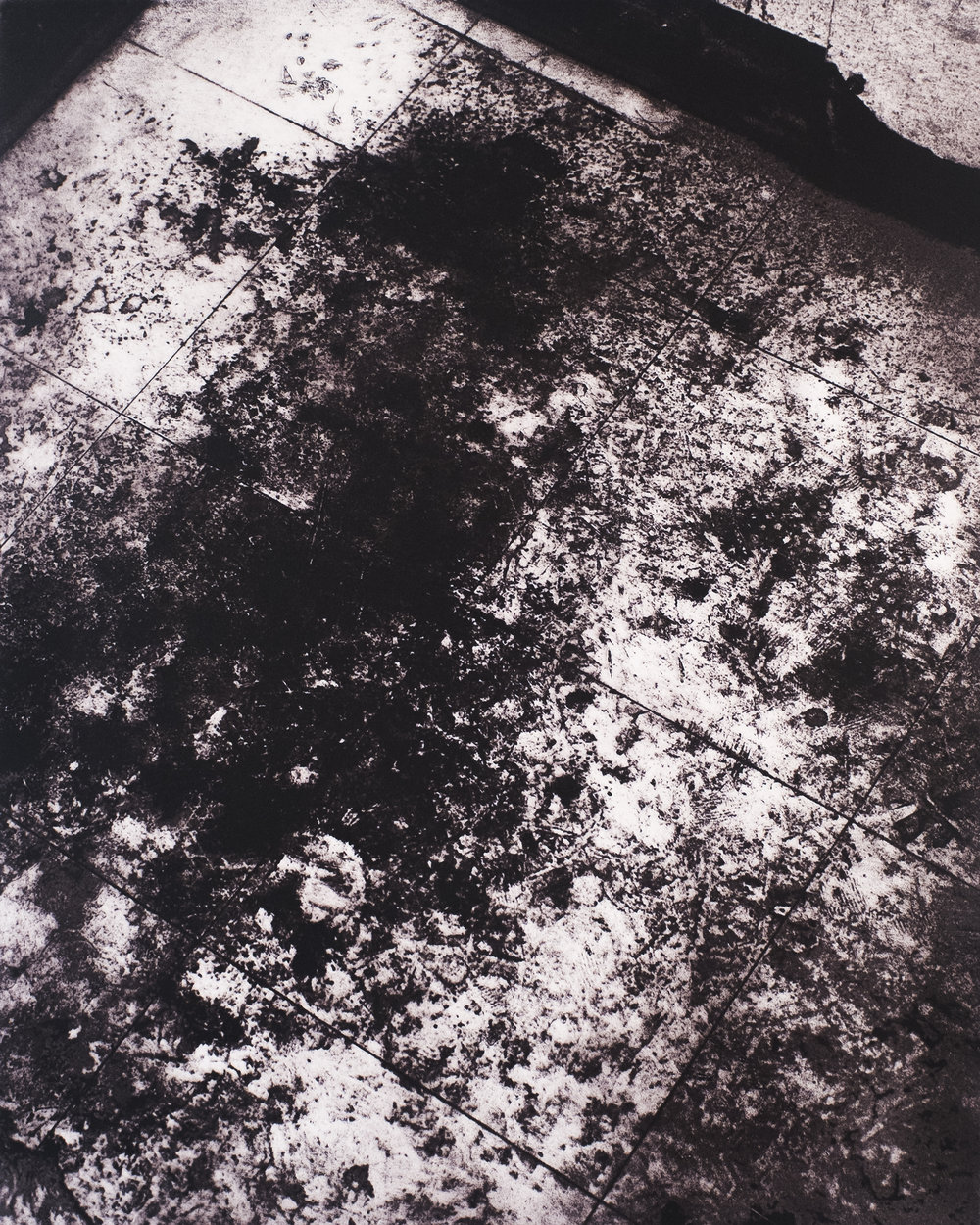All Is Ephemeral (#12) , photopolymer etching, 20 in. x 16 in., 2016