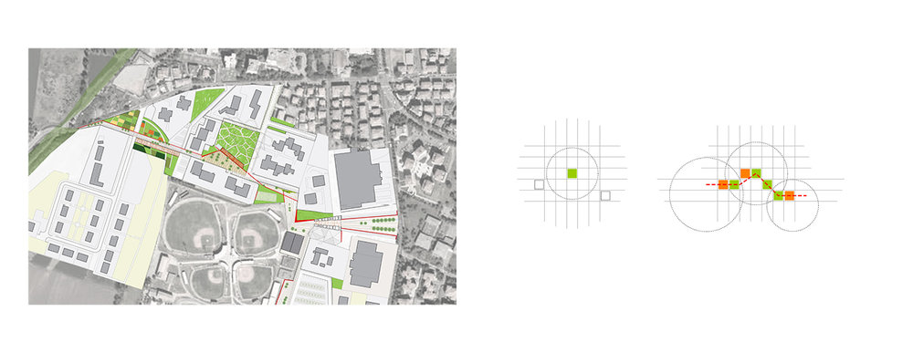MVOA_web_squarespace7.jpg