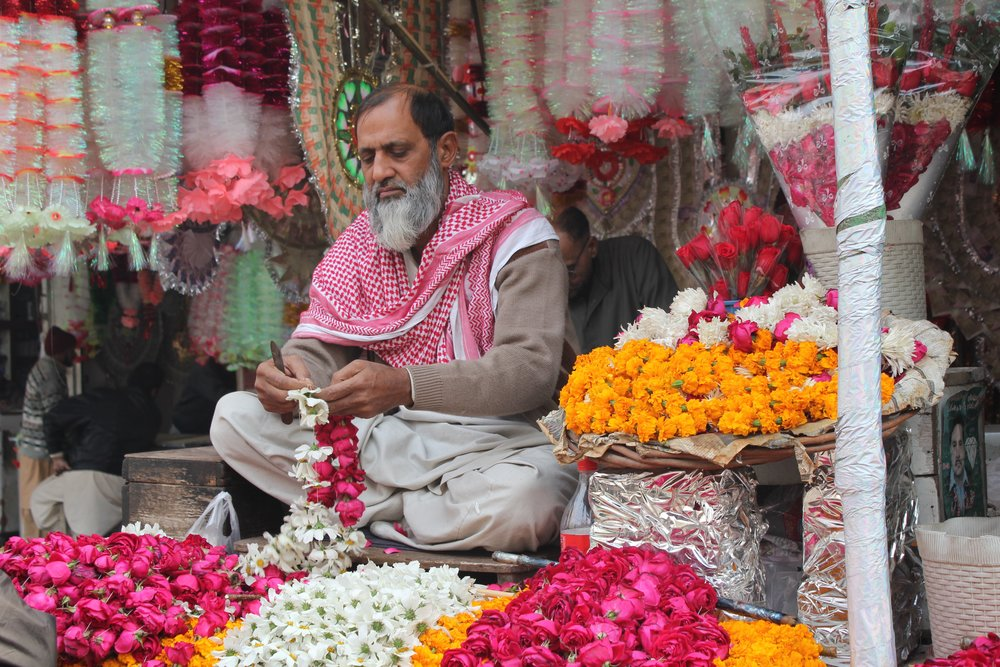 Magenta_Lahore Flower Shop