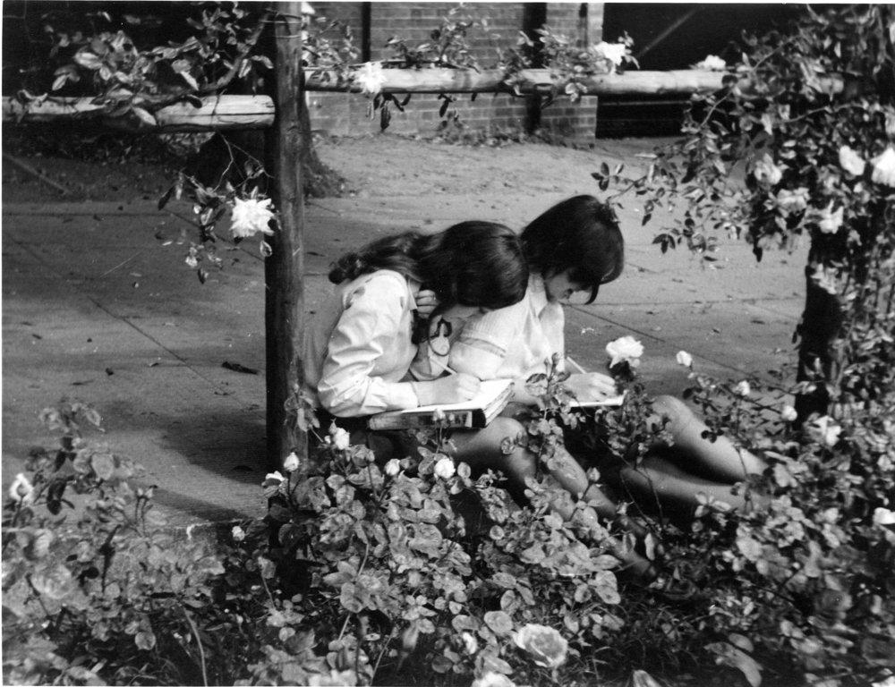 1966-1976(6).jpg