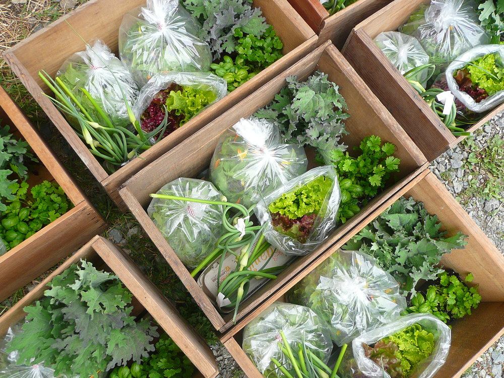 Fresh. Local. Sustainable. - Find your local Harvest Hub today.