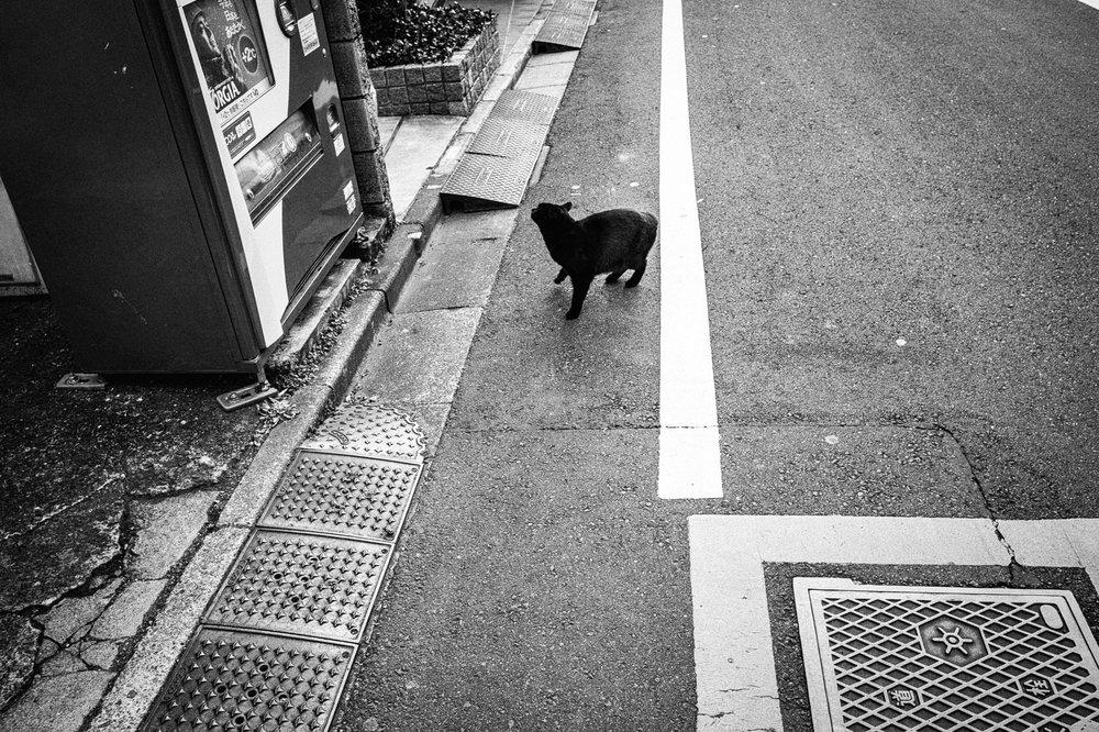 Jingūmae, Shibuya-ku
