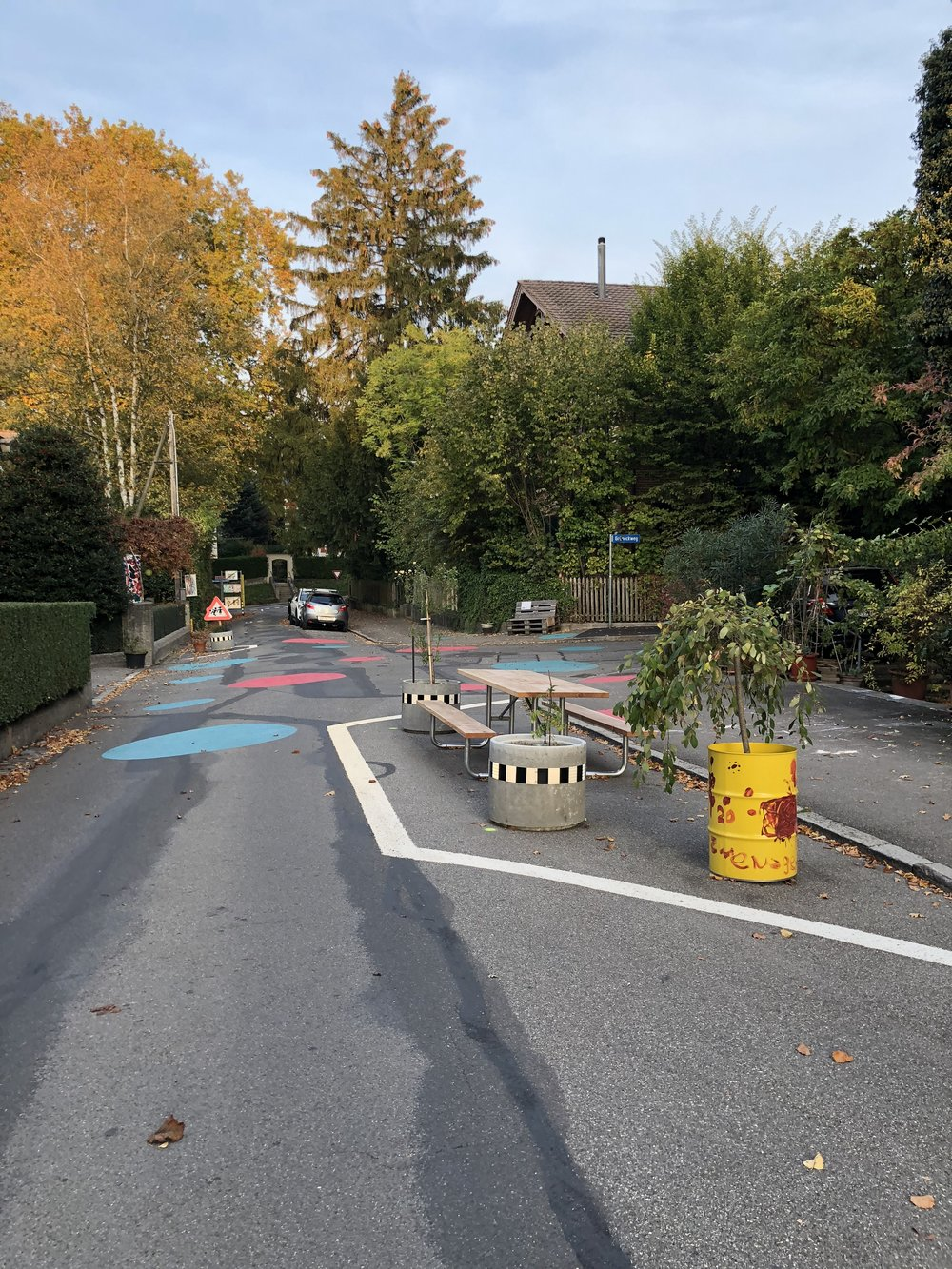 Children design the 20 km/h zone in front of their homes in a residential area.