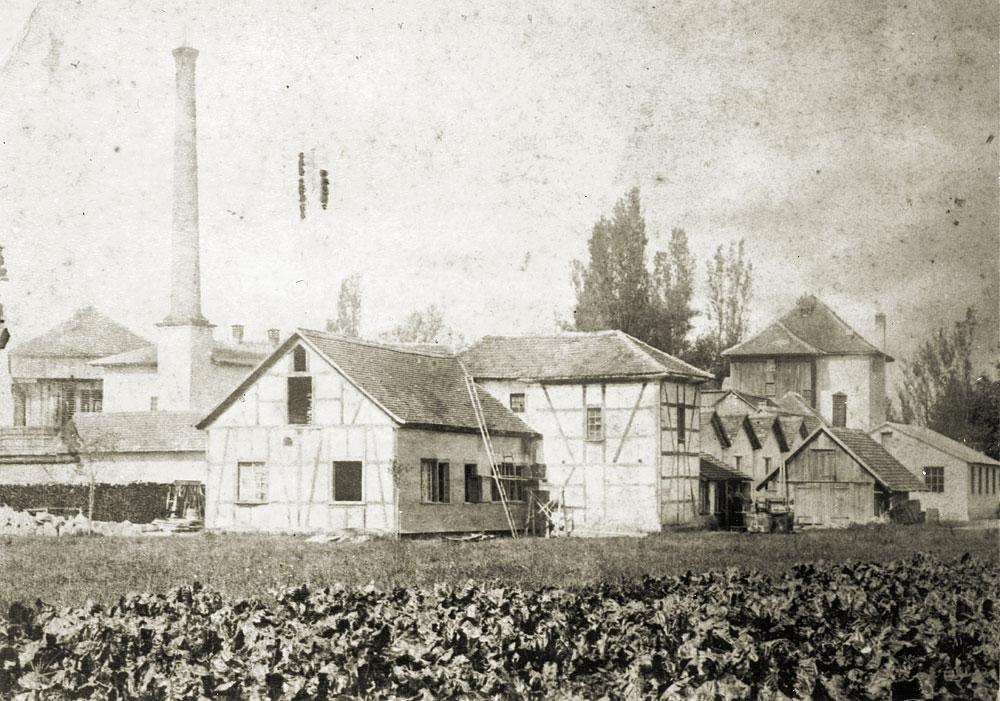 Jenny Fabrik, um 1900 35
