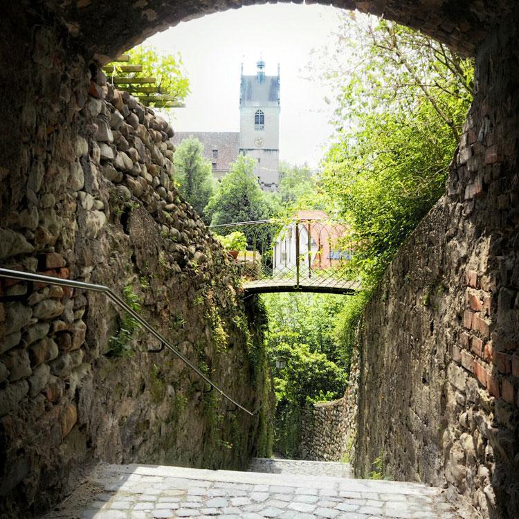 """Meißner ließ die unter einem Anbau beginnende und ins Tal hinunter Richtung Pfarrkirche St. Gallus führende Stiege anlegen, die als """"Meißner-Stiege"""" an ihn erinnert. 43"""