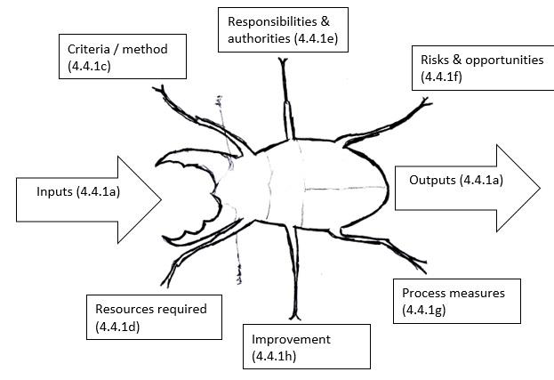 Figure 3. Beetle Diagram (Modified Turtle Diagram)