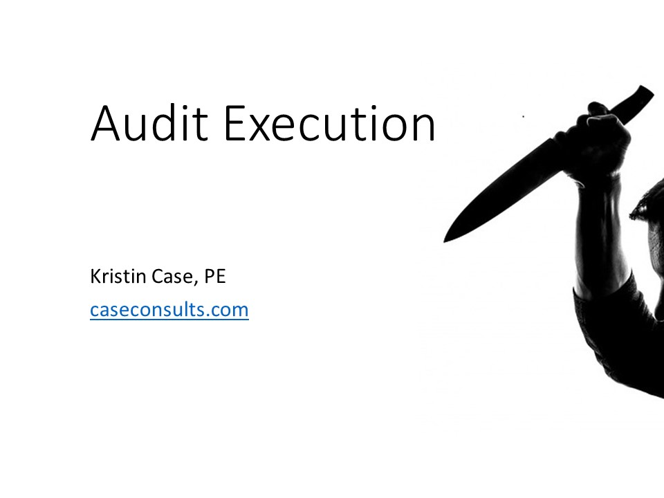 audit execution NQA 2018 internal consultant case.jpg