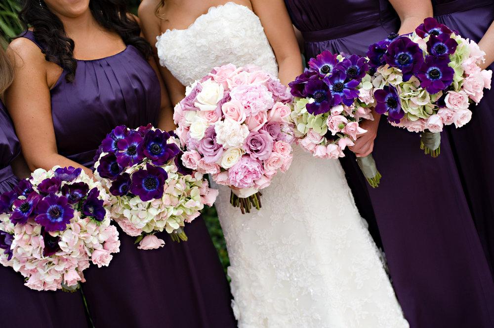 Wedding Dress - Bridesmaids Dresses