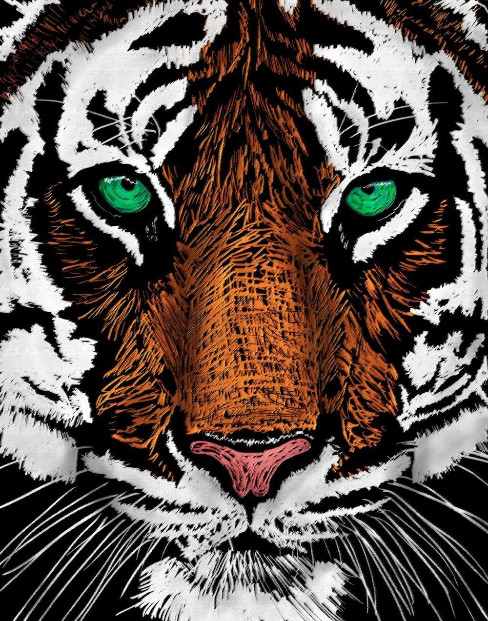 Tiger photoshopped.jpg