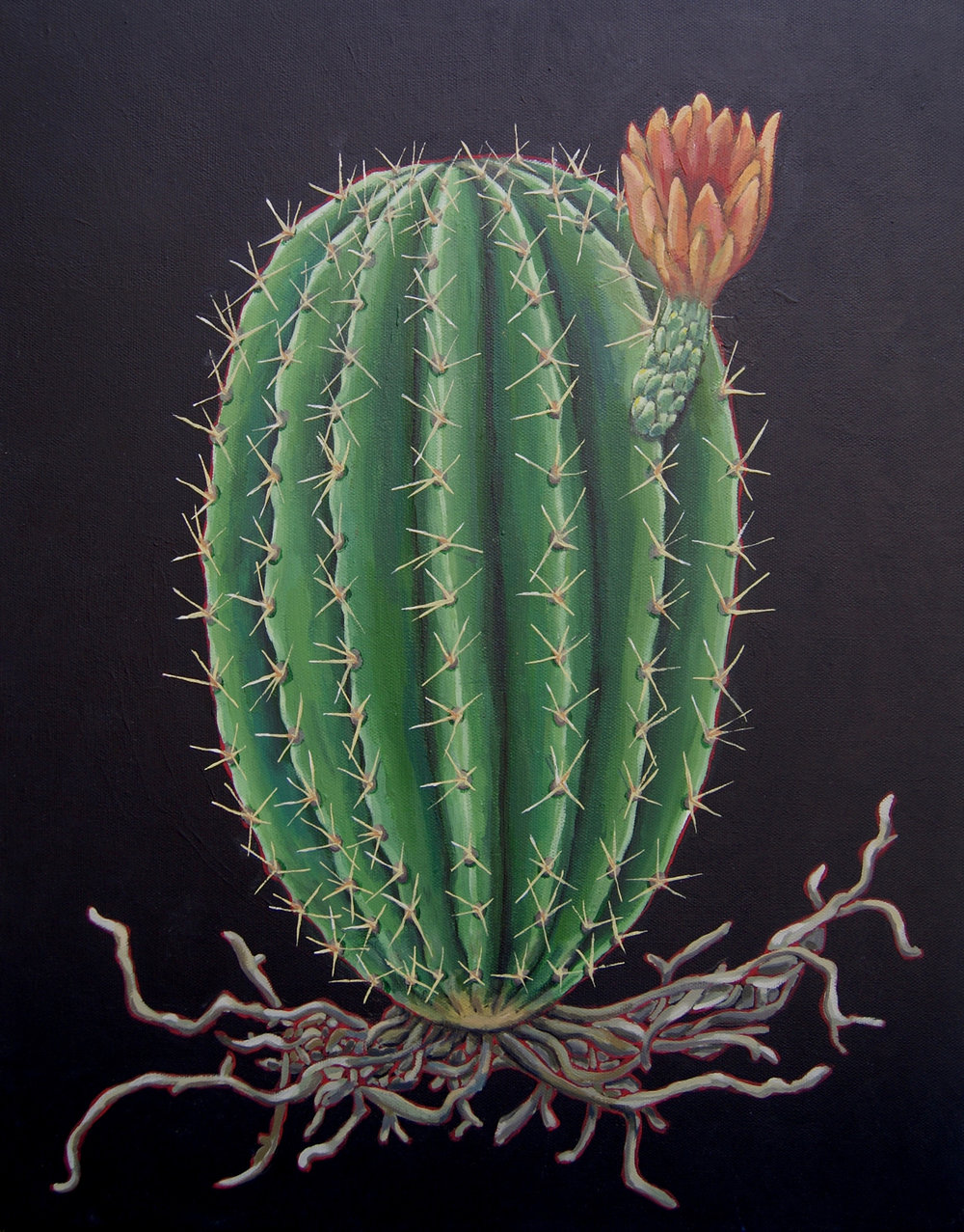 cactus bloom painting.jpg