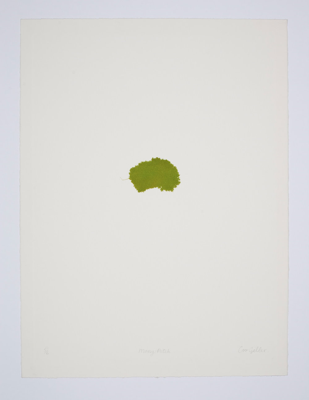 34b)mossy patch on white print.jpg