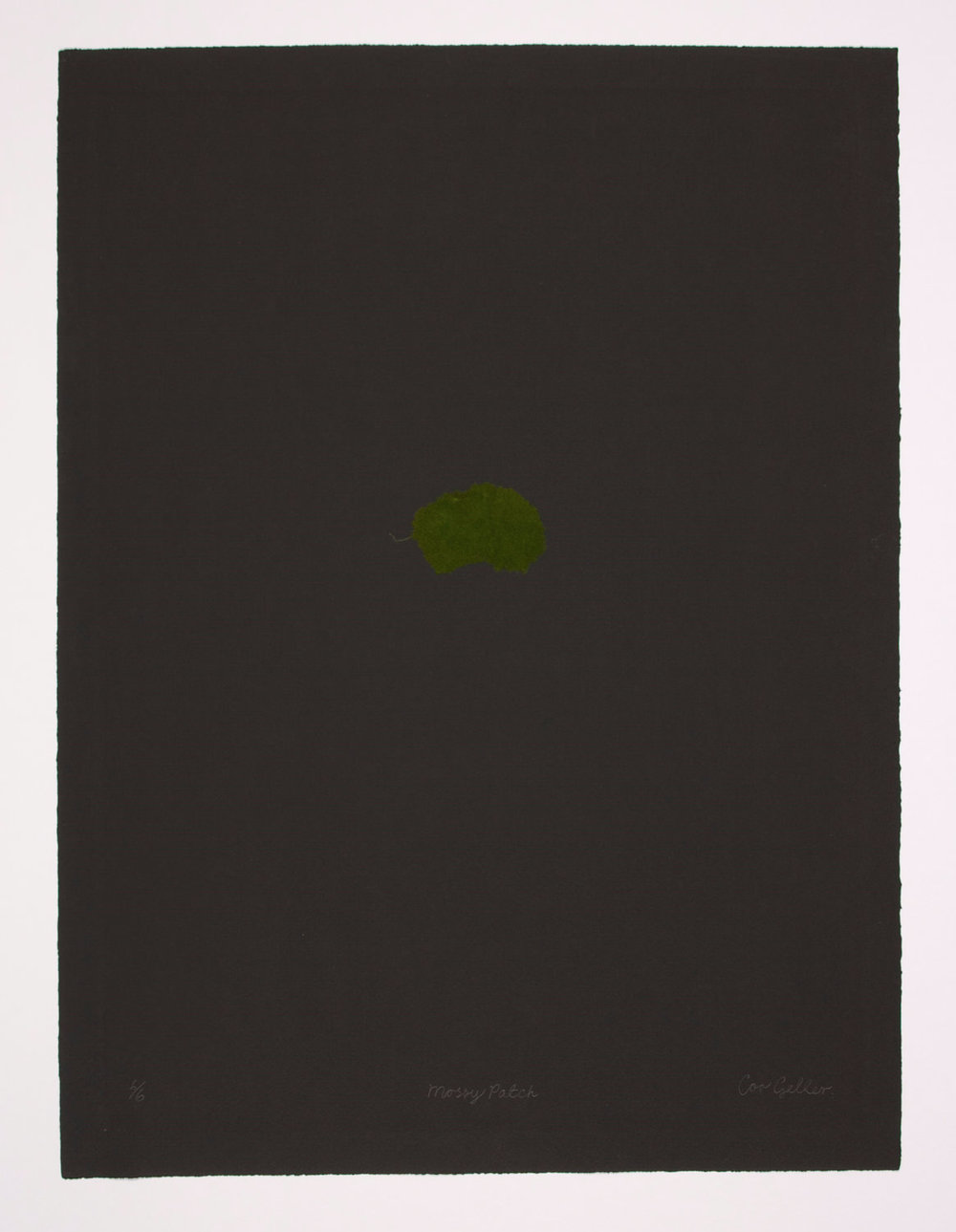 34c) mossy patch on black print.jpg