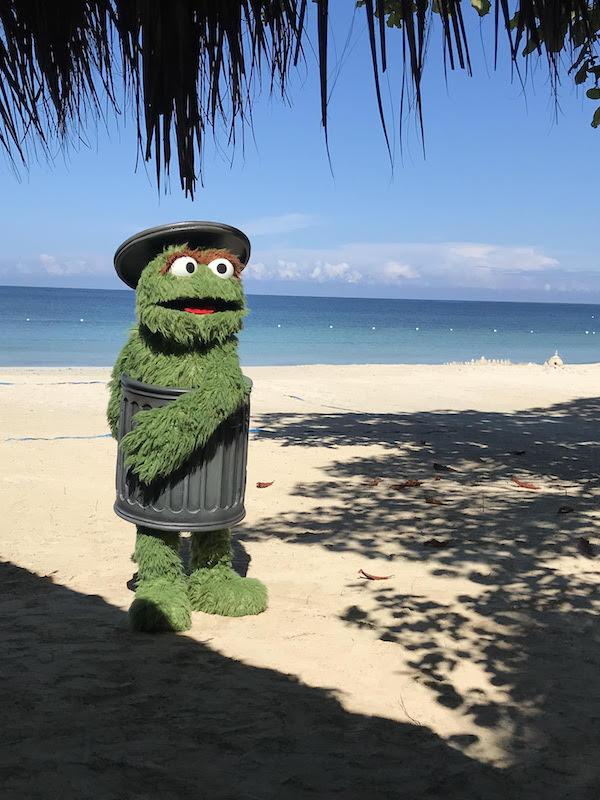 Sesame Street hits the beach!