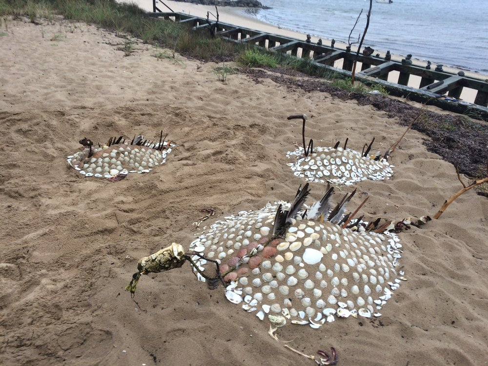 Beach Shell Sculpture.jpg