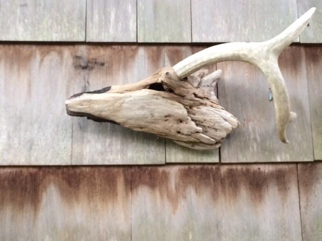 Driftwood Deer.jpg