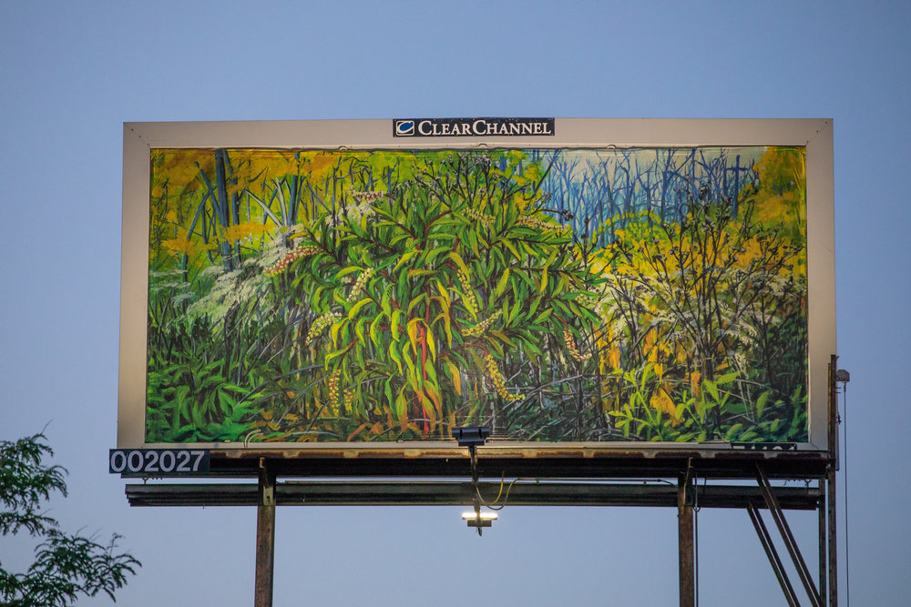 Billboard near 101st and Western, Chicago