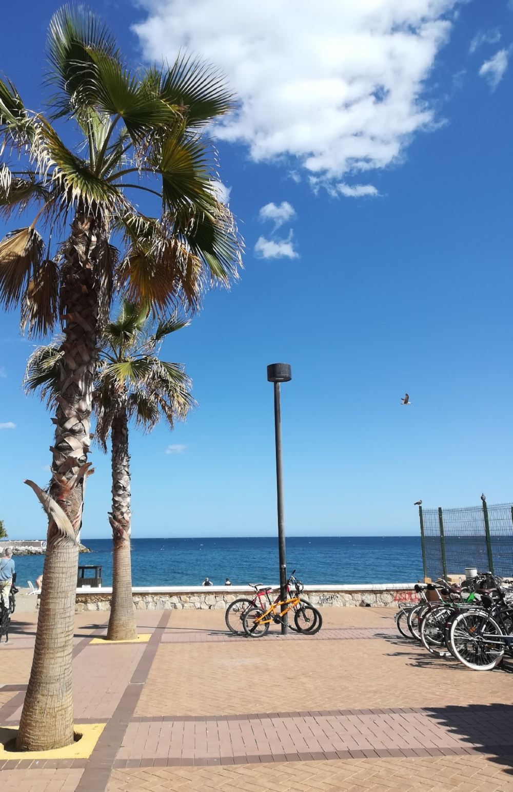 Counselling in Fuengirola, Costa del Sol.