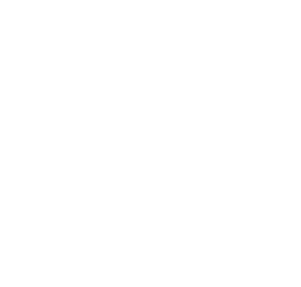 NOTCH-STAR-WHITE.png