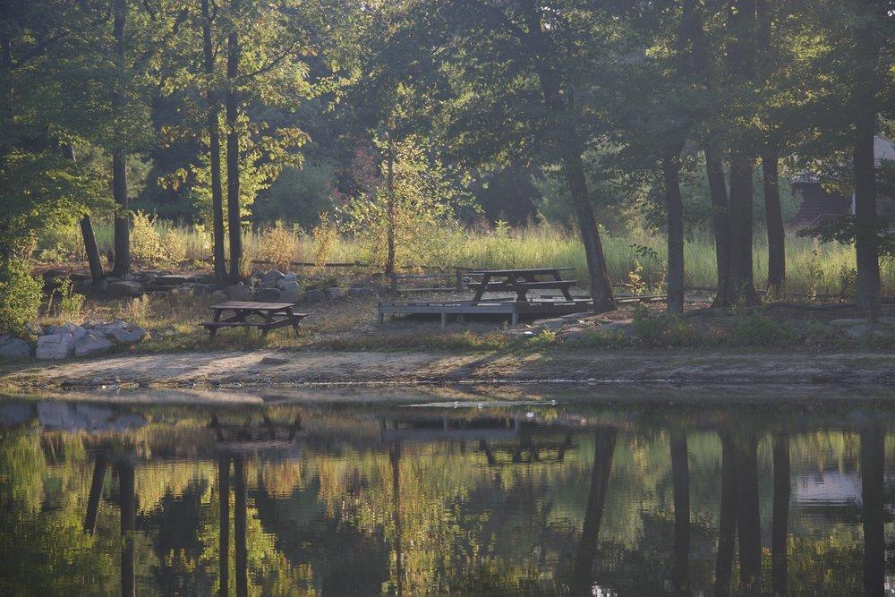 Rocky Woods- Medfield, MA