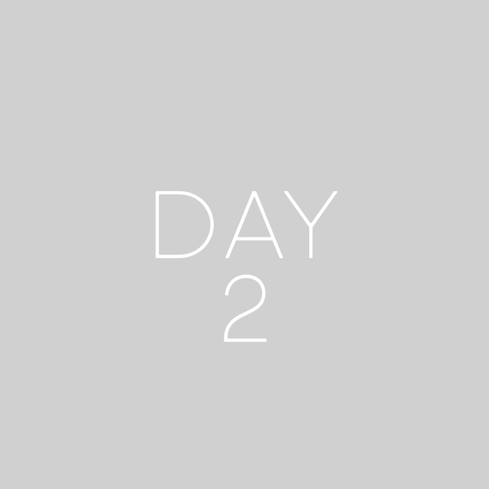 8WP-Days-2-GREY.png