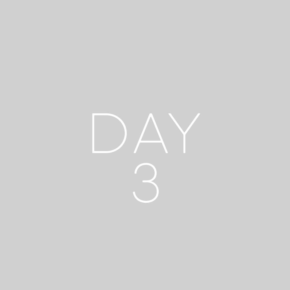 8WP-Days-3-GREY.png