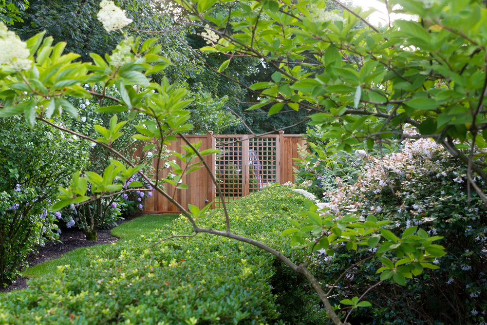 IMG_5437 446 First Neck Garden.jpg