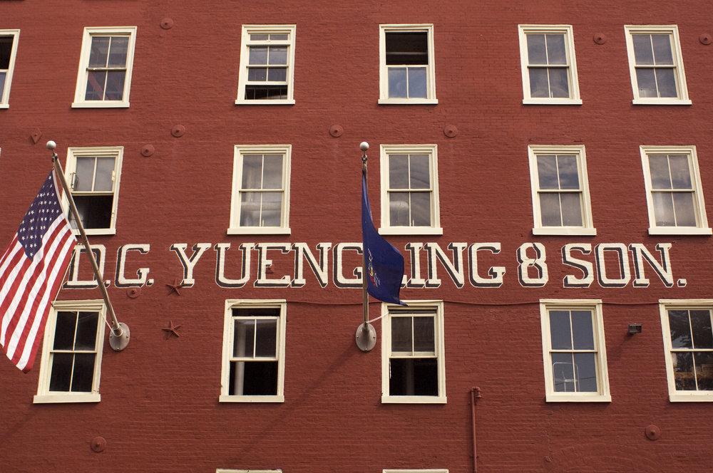 yuengling -
