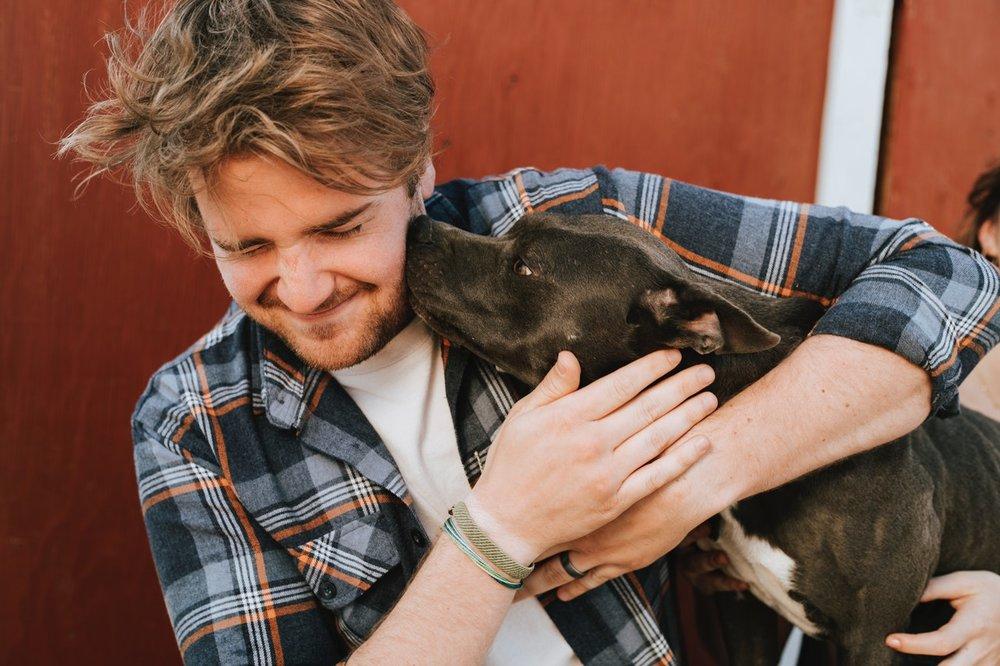 Embark Dog DNA Test - Breed, Health, Ancestry, Relative Finder, and Vet Report