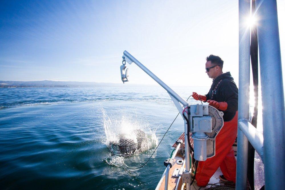 Captain Jason throws out a Rock Crab trap in Santa Cruz, CA