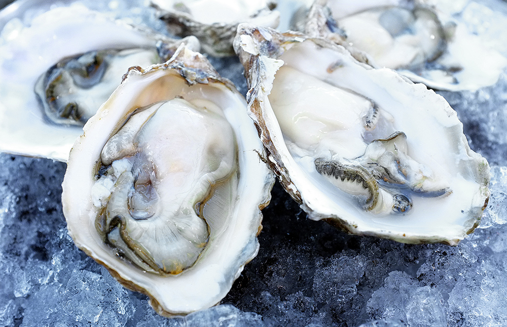 Oyster Recipes - Bayview Community Farmers Market(Click to download)