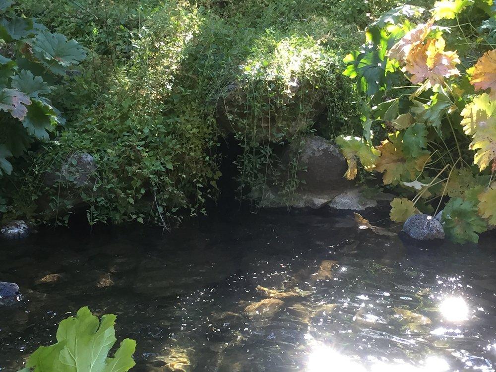 McCloud Lower Falls