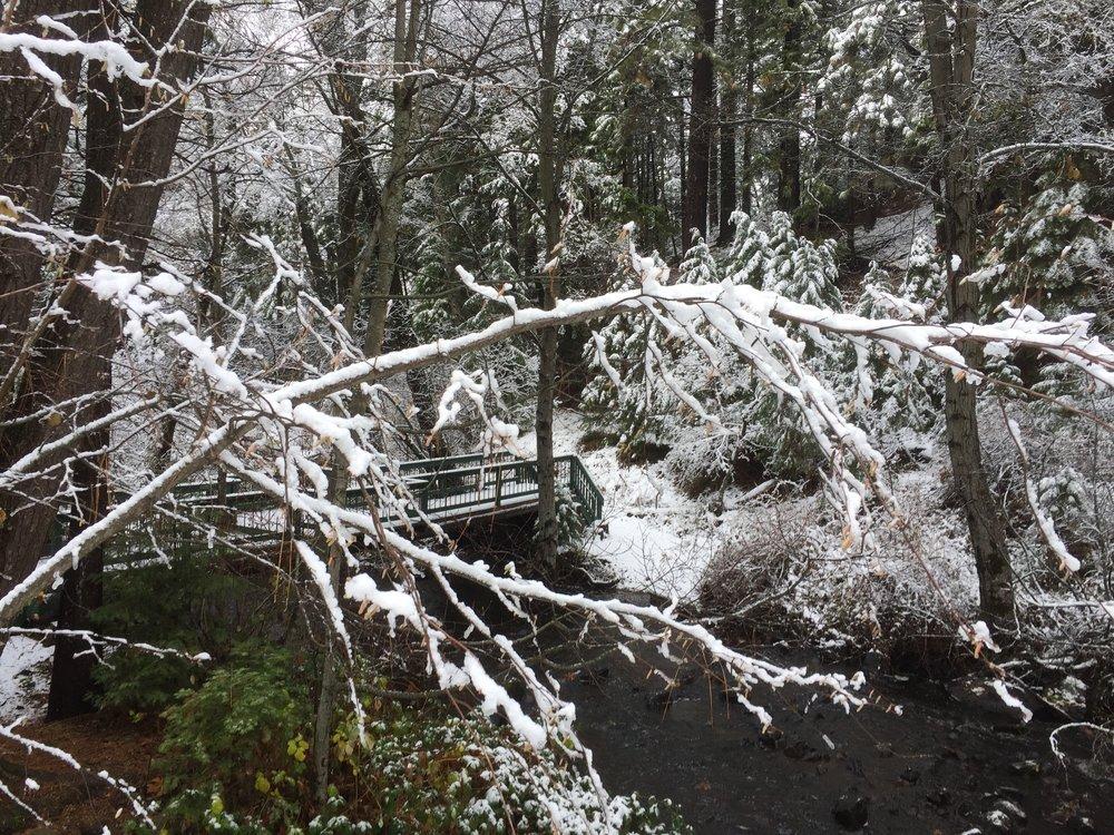 Winter Solstice Energy is Everything EIE Retreat.jpeg