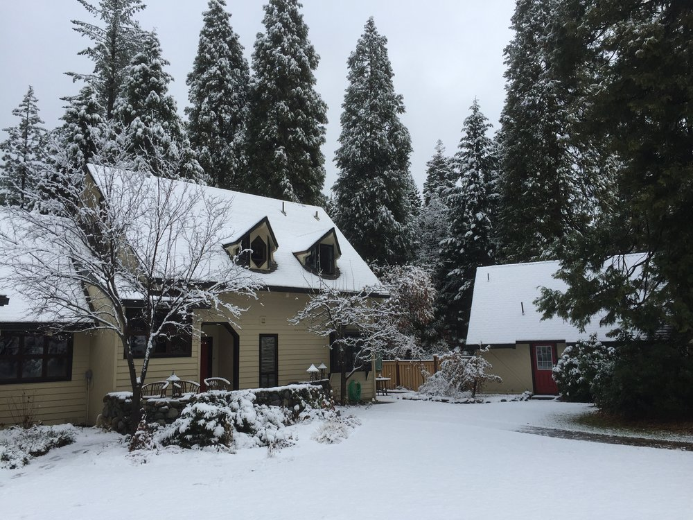 Winter Solstice Energy is Everything EIE Retreat