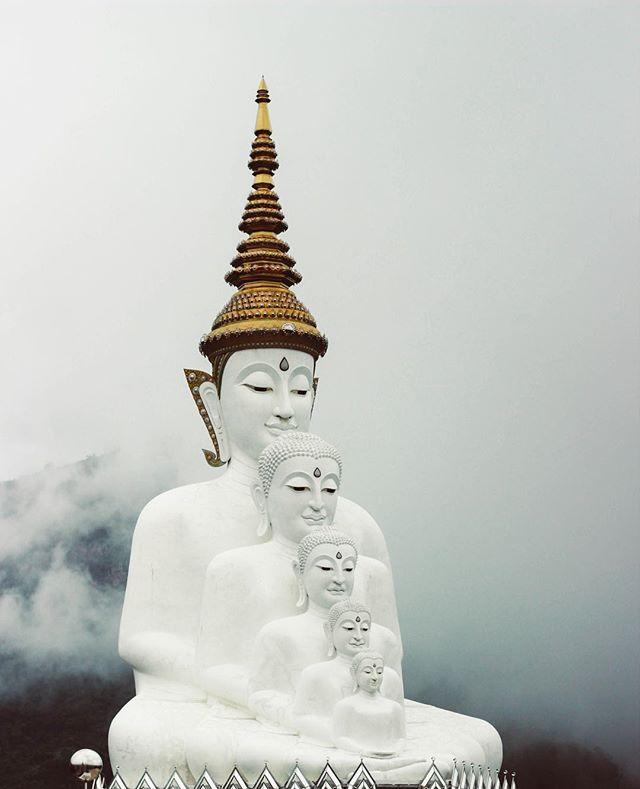 Un immagine della Thailandia giusto per ricordarvi di quanto il mondo sia vasto e ricco di bellezze da esplorare.⠀ Se state passando una giornata da dimenticare, lasciatevi ispirare e pensate che la Tailandia è una delle mete preferite dei digital nomads.(Ma speriamo che voi stiate passando una giornata super, hip hip hooray!)⠀ .⠀ .⠀ .⠀ .⠀ .⠀ .⠀ .⠀ .⠀ .⠀ .⠀ .⠀ #alternatyve #thenewyou #jobsearch #remotework #startup #goodbyeroutine #mondayblues  #alternatyvetips #escape #newproject #monotonysucks #alternative #letsbeinspired #inspire #beinspired #smile #escapethecity #escapetheordinary #travel #unsplash #thailand