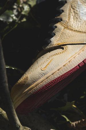 dc6e09e5fb Nike Air Jordan: Nigel Sylvester