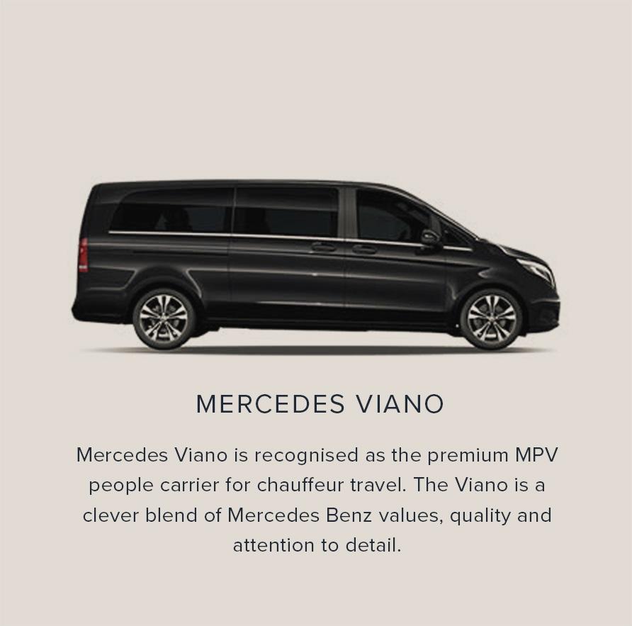 Mercedes Viano.jpg