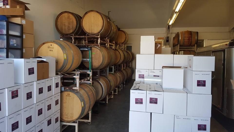 vineyard (4).jpg