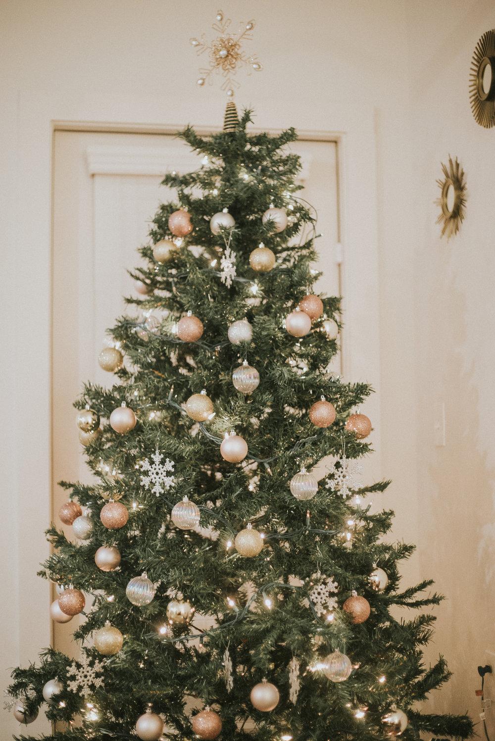 STEPHANIE_CHRISTMAS-84.jpg