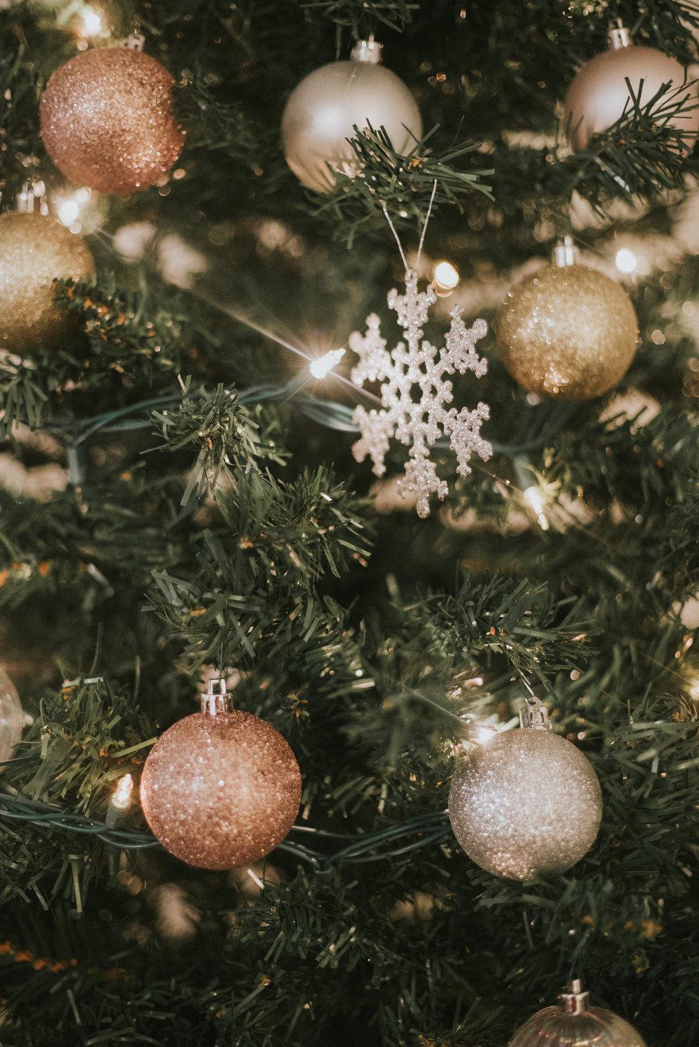 STEPHANIE_CHRISTMAS-80.jpg