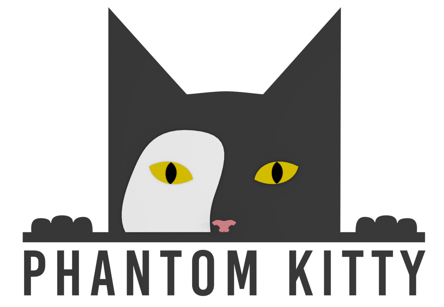 Phantom Kitty Project
