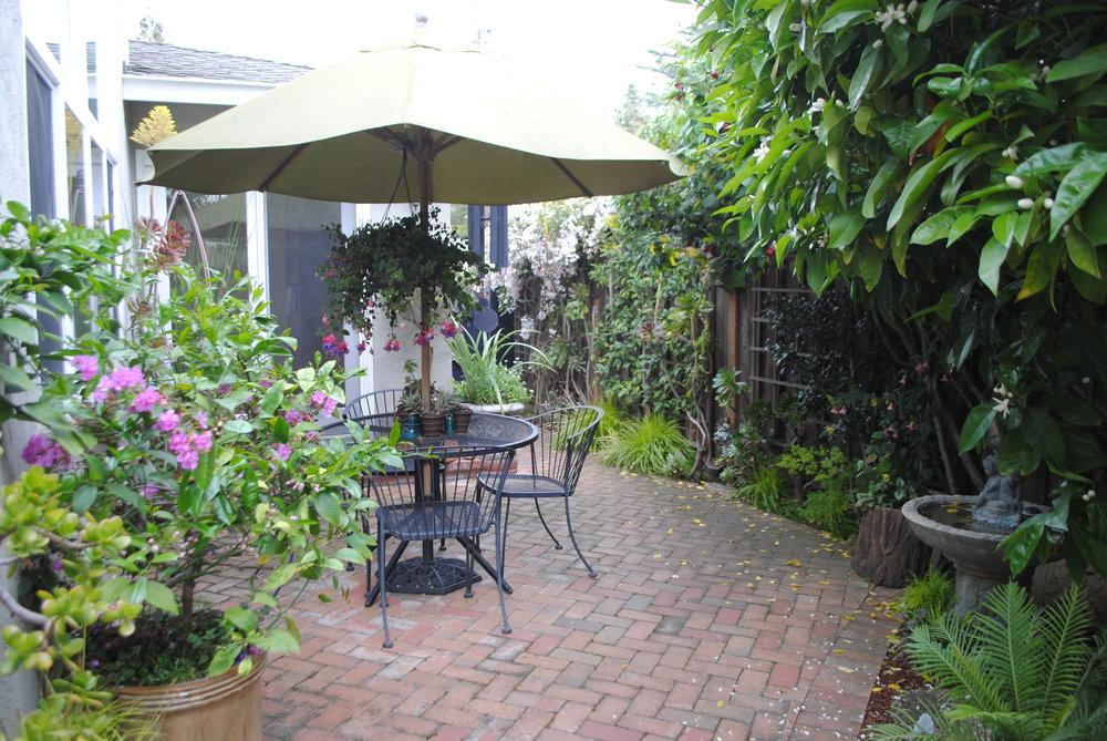 482 San Luis, Los Altos Garden.JPG