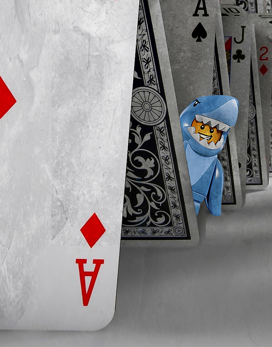 card-shark_32430574204_o.jpg